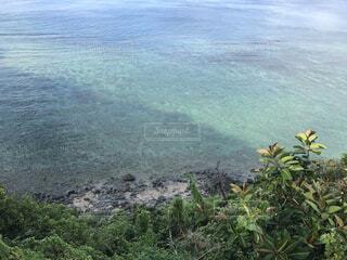 奄美大島の風景の写真・画像素材[4718071]