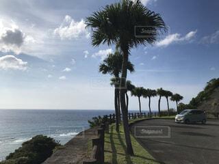 奄美大島の風景の写真・画像素材[4718076]