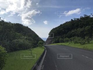 奄美大島の風景の写真・画像素材[4718080]