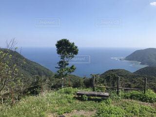 奄美大島の風景の写真・画像素材[4842989]