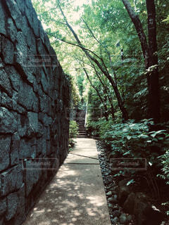 都会での散歩の写真・画像素材[4690757]