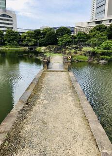 都会&自然の写真・画像素材[4714761]