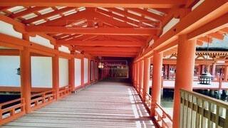 宮島の写真・画像素材[4800442]