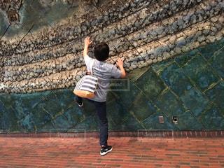 岩の写真・画像素材[595146]