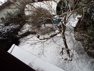 冬 - No.210303