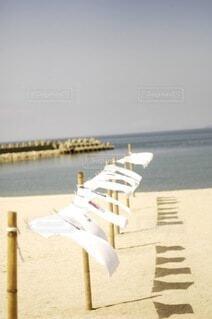 海ティーシャツの写真・画像素材[4673675]