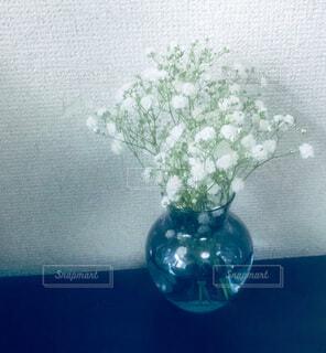 かすみ草の写真・画像素材[4675990]