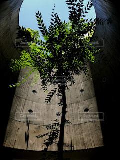 地下鉄への光の写真・画像素材[1451623]