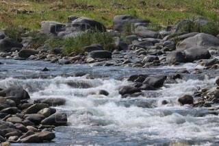 晴れた日の川辺の写真・画像素材[4682864]