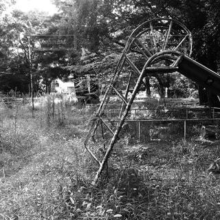 公園の写真・画像素材[214637]