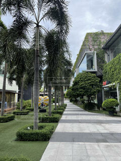 Crystal Design Center in Bangkokの写真・画像素材[4820925]