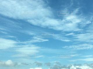 自然の写真・画像素材[233735]