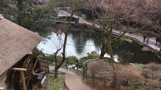 庭園 - No.303211