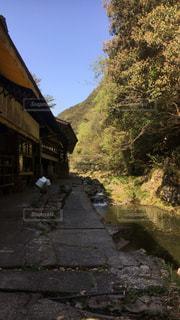 徳島県の写真・画像素材[444457]