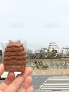 姫路城の写真・画像素材[701337]