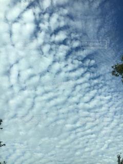 空には雲のグループの写真・画像素材[706022]