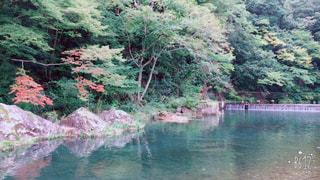 湯原温泉付近の景色です🍁 - No.778474