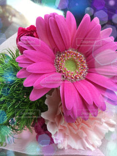 花束とキラキラ!の写真・画像素材[873777]