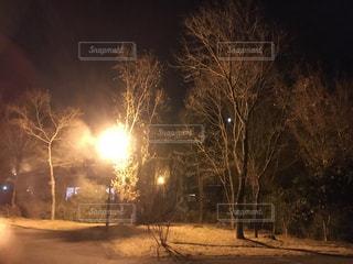 寒い夜!の写真・画像素材[936685]