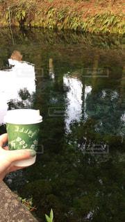 熊本県!白川水源!の写真・画像素材[936743]