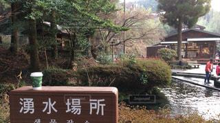 熊本県!の写真・画像素材[936752]