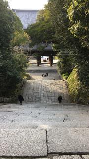 階段からの景色!の写真・画像素材[1011745]