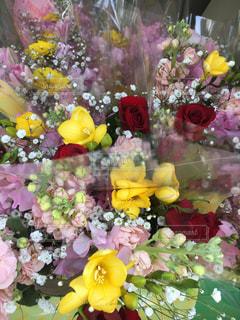 花束の束!の写真・画像素材[1031526]