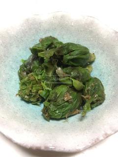 山菜料理!の写真・画像素材[1044769]