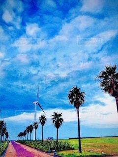 風車のある故郷の写真・画像素材[4713982]