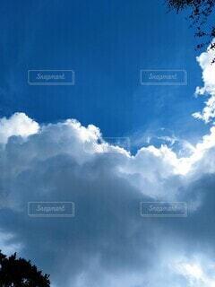 夏の空の写真・画像素材[4697545]