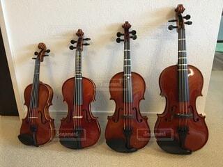 分数バイオリンの写真・画像素材[4700845]