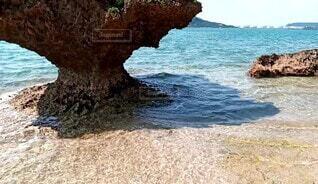 沖縄の海辺です。の写真・画像素材[4709191]
