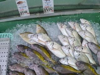 沖縄の市場のの写真・画像素材[4709607]