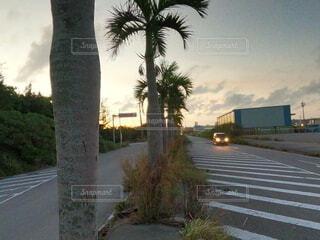 夕焼けと道路の写真・画像素材[4718605]