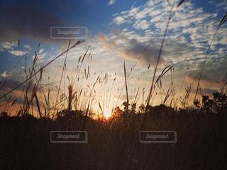 宮古島の夜明けの写真・画像素材[1677901]