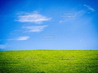 夏の晴れた沖縄の青々とした芝生の写真・画像素材[3399025]
