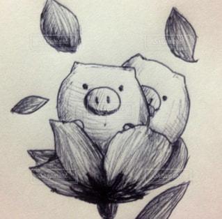 イラスト,絵,ブタ,豚,落書き,手描き,ボールペン,ラクガキ