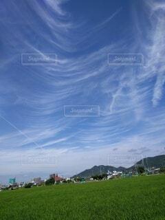 大空のキャンパスの写真・画像素材[4716768]