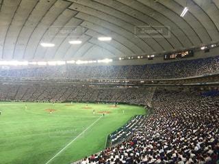 野球の写真・画像素材[210226]