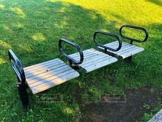 芝生とベンチの写真・画像素材[4797686]
