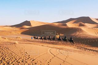砂漠の写真・画像素材[321841]