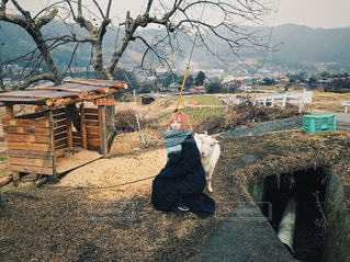 ヤギと女子 - No.1001119
