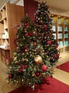 部屋の中のクリスマスツリーの写真・画像素材[4827888]