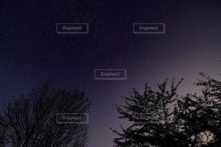 自然の写真・画像素材[248070]