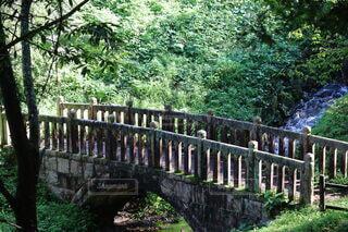 橋の写真・画像素材[4786728]