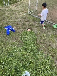草の布団の写真・画像素材[4743195]