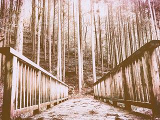 風景  季節  自然  山  静寂の写真・画像素材[374526]