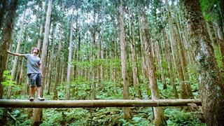 風景  季節  自然  山  静寂の写真・画像素材[376364]