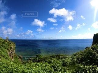 高台からの海の写真・画像素材[4738056]