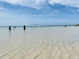橋とビーチの写真・画像素材[4738065]